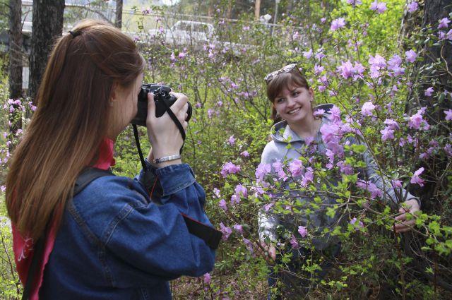 Цветы маральника способны украсить любую фотографию.