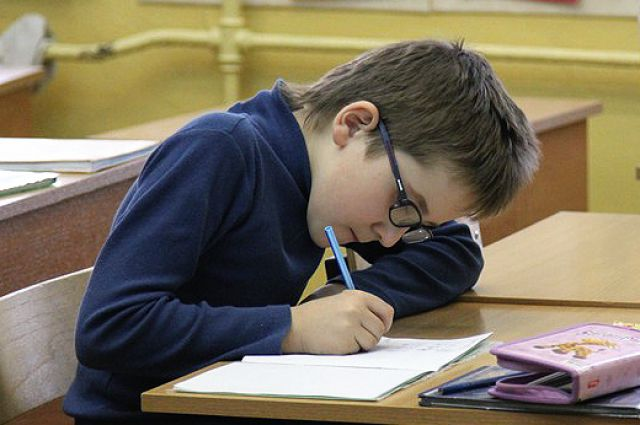 По многим предметам новосибирские школьники показали лучшие знания