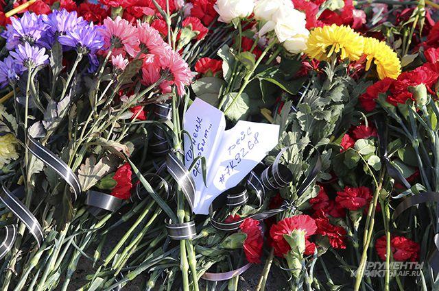 СКпродлил расследование крушения Airbus 321 над Синаем