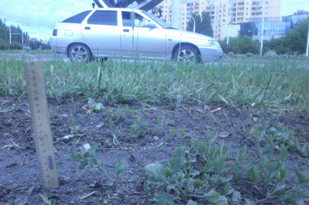 13 мая. На повороте в сторону пр. Курчатова грязи меньше - всего 7 сантиметров,..