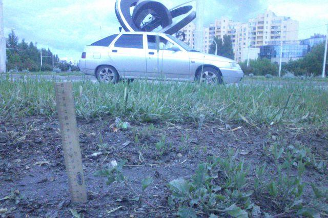 Волгодонск 13 мая 2016 года. Уровень грязи в центре города.