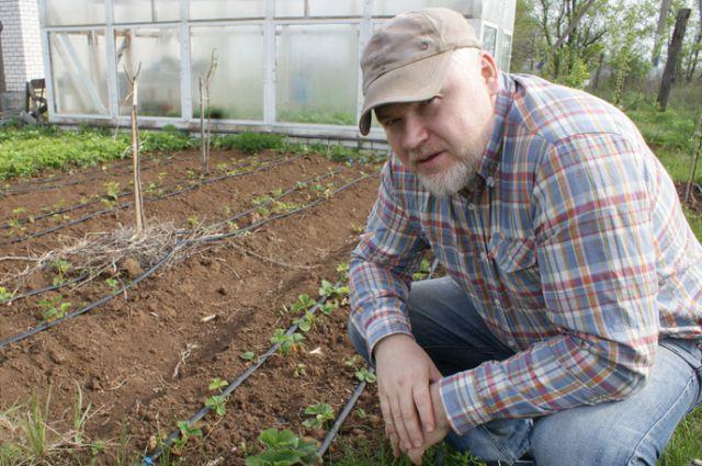 Дмитрий Пономарёв знает, как закопать деньги в землю, чтобы потом годами рвать их с куста.