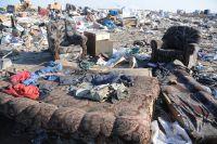 Мусор в Омском районе должны убрать к 1 июля.
