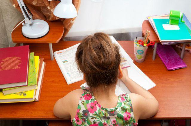 Домашнее обучение раньше было фактически единственной возможностью получить образование для