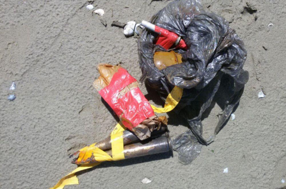 Выяснилось, что собака нашла в воде гранату РГД-5, взрыватели к ней и патроны. Всё находилось в боевом состоянии.