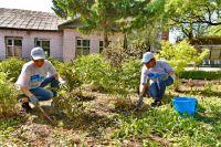За два года волонтёры высадили свыше 1500 деревьев и кустарников.