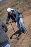 Кстати, для посадки используется вот такая штыковая лопата, которой землю не копают, а слегка проворачивают.