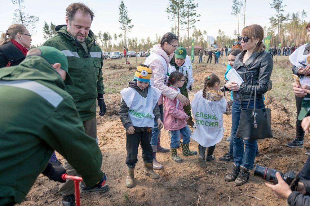 Правильно садить сеянцы сосны многих в этот день научил лично Срегей Донской - министр природных ресурсов и экологии России.