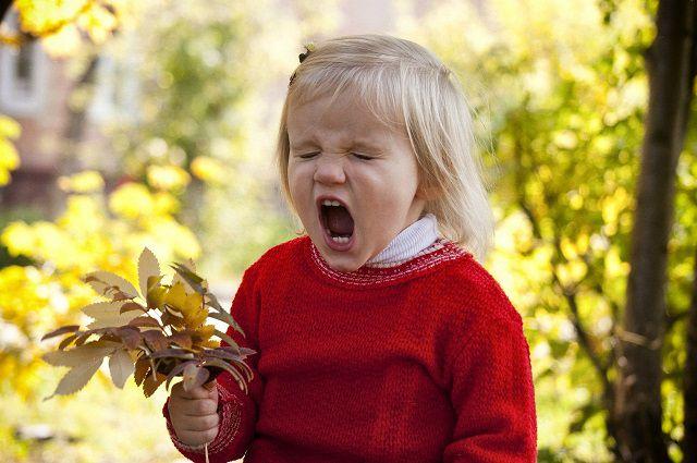 Главные симптомы поллиноза – насморк, слезящиеся глаза, кашель, першение в горле.