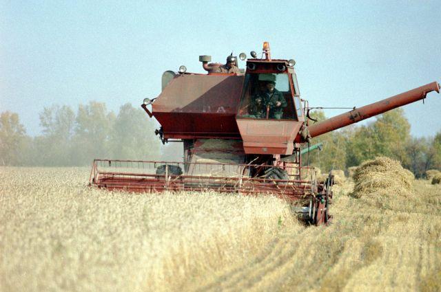 В крупных хозяйствах не хватает земли.
