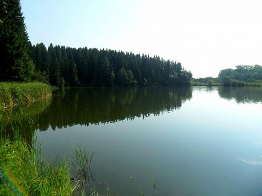 Любителей рыбалки и пикников у воды порадует Култаевский пруд, расположенный вблизи «Южного ветра».