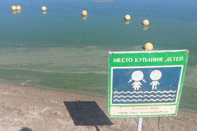 Вода позеленела в районе разрешённого пляжа.
