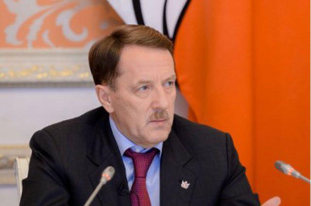 Губернатор призвал силовиков взять под особый контроль дело Екатерины Череповецкой