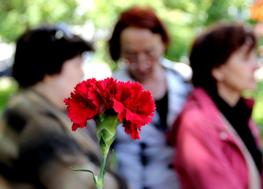 Красные гвоздики - символ памяти п признательности потомков