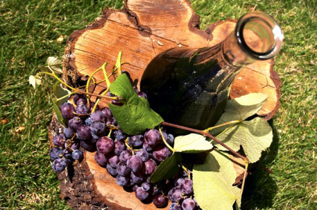 Займ денег под птс форум виноград займ под залог птс Кржижановского улица