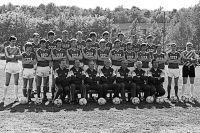 Сборная команда СССР по футболу, участвовавшая в чемпионате Европы в 1988 году.