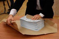 Для одних выборы - немалые расходы, для других - шанс заработать.