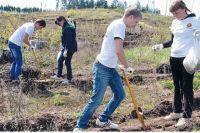 Каждый год сотрудники предприятия дружно выходят на экологические акции.