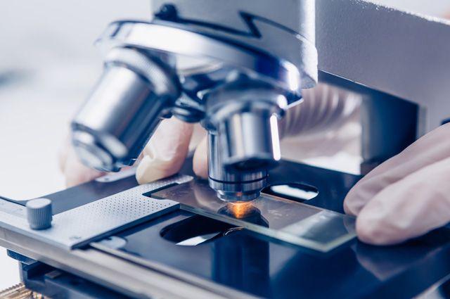 Успехи в области инноваций в России, кажется, можно увидеть только под микроскопом...