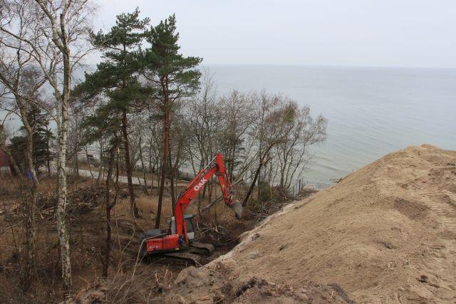 В Светлогорске у спуска к солнечным часам незаконно срубили 44 дерева.