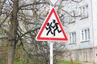 Водителям регулярно напоминают быть осторожнее. Но те регулярно забывают, что на дороге не одни.