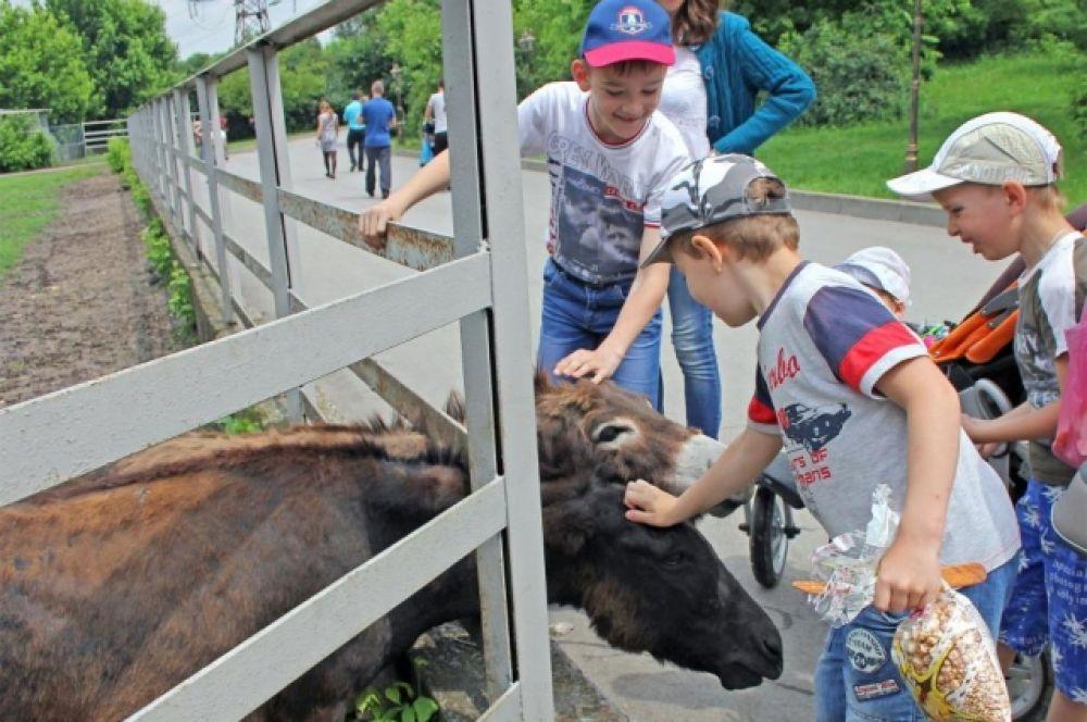 12 июня в зоопарке посетителей ждут экскурсия ,посвященная животному миру России, концерт, конкурсы и розыгрыши сувениров.