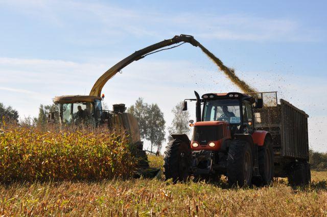 «Калининградская мясная компания» инвестирует более 400.