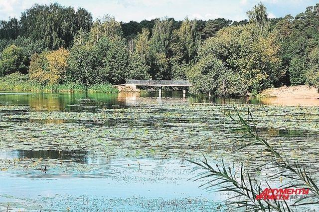 У Бездонного озера пугающее не только название.
