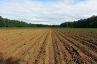 702,7 млн рублей потратили в первом квартале 2016 года на сельскохозяйственную технику.