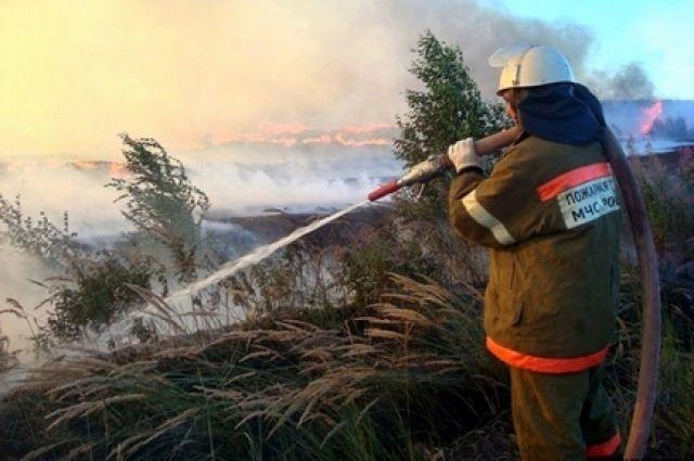 Высший класс пожароопасности установился в трех регионах на юге России из-за жары