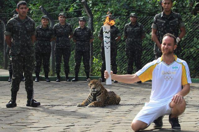 ВБразилии ягуар, принимавший участие вэстафете олимпийского огня, напал навоенного