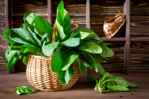 Шпинат. В нем большое количество магния и витаминов группы B. Еще шпинат содержит лютеин. Это антиоксидант, защищающий от солнечного излучения глаза и кожу.