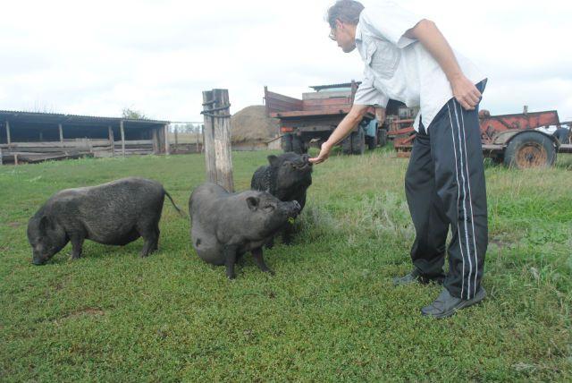 Фермер Александр Уткин из села Заречное Барышского района к сельхозпереписи готов вместе со своим хозяйством.