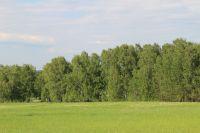 В ведение города переходит два земельных участка.