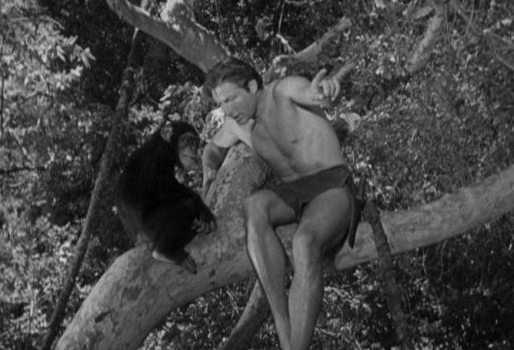 Лекс Баркер исполнил роль Тарзана в пяти фильмах с 1949 по 1953 года.