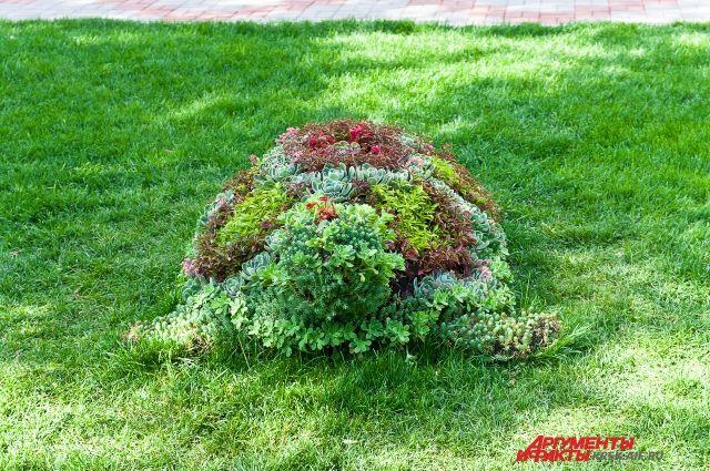 Специалисты завершают работы по оформлению фигур вертикального озеленения.