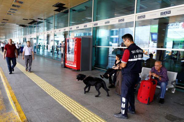 Перед открытием аэропорта полицейские провели тщательный досмотр всех пассажиров, обследовали здание терминала и проверили все автомобили на парковке аэропорта и рядом с ней.