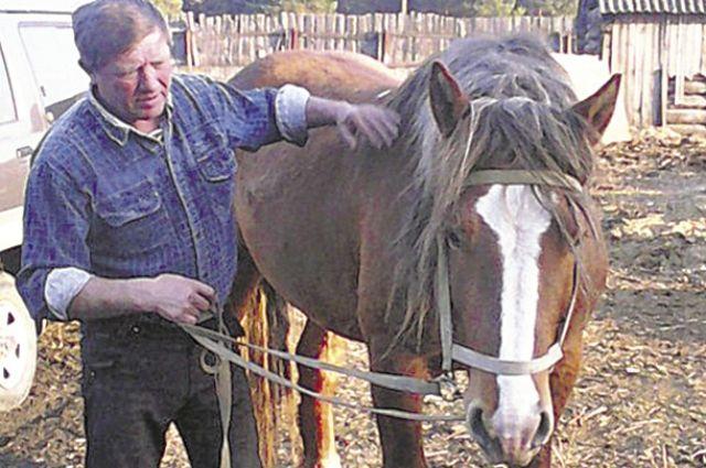 Растениеводством в Красноярском крае занимается более 960 предприятий, животноводством - 104.