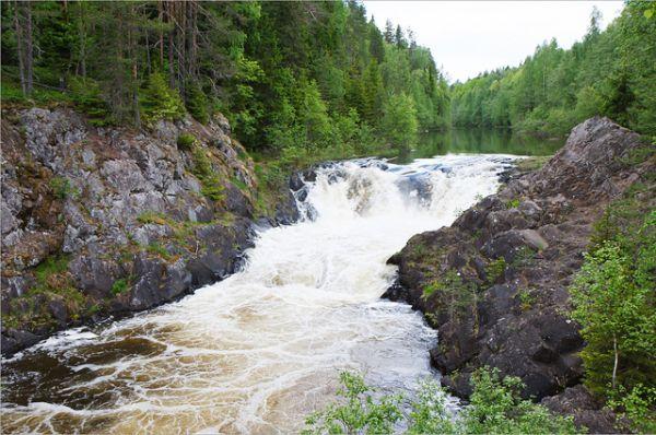 Водопад Кивач. Самый известный из всех карельских водопадов, которых тут, к стати, в изобилии. С финского его название переводится как «мощный», «стремительный». Вокруг водопада – пешеходный маршрут небольшой протяженности (до 1 км).