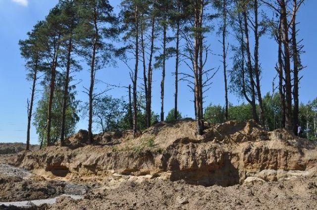 Незаконную добычу янтаря маскировали под рекультивацию земель.