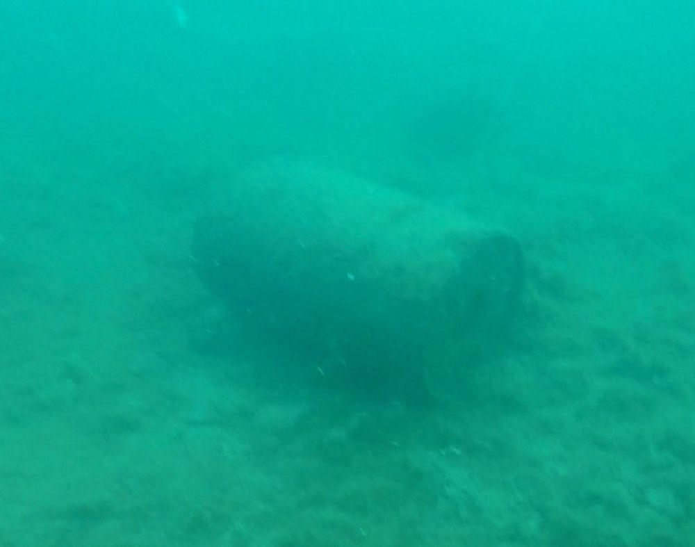 Боеприпас в акватории бухты Казачья на глубине 11 метров в 519 метрах от берега нашли дайверы.