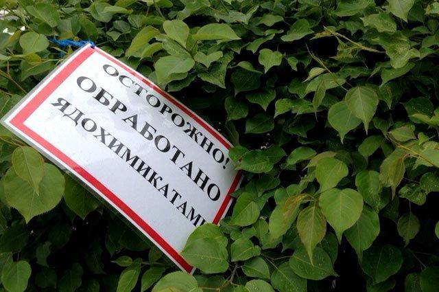 Ядохимикаты с заброшенного склада обязали уничтожить власти Зеленоградска.