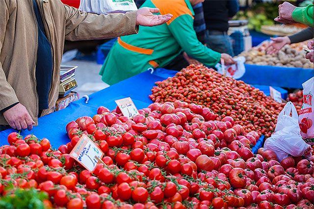 Турки рассчитывают вновь зарабатывать на российских туристах и поставках овощей и фруктов.