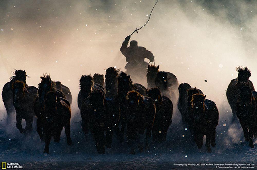 Фото зимнего всадника от Anthony Lau заняло первое место на конкурсе лучших фото в стиле трэвел от National Geographic