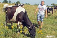 Аграрии Калининградской области впервые отпразднуют День балтийского поля.