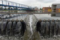 Зубчатый водослив вторичного отстойника на территории Люберецких очистных сооружений.