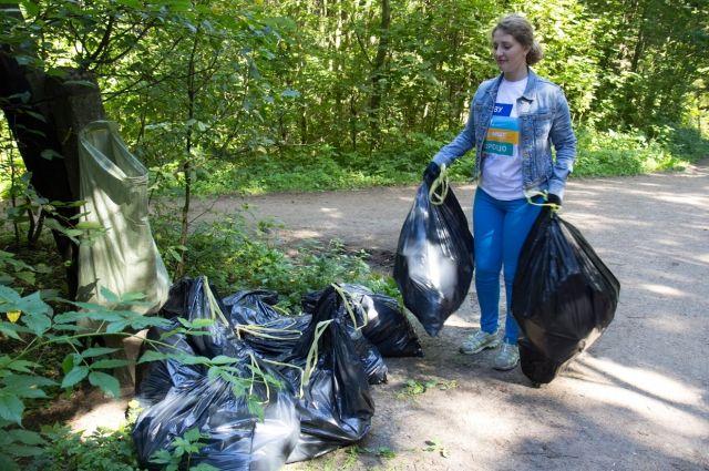 Добровольцы наведут порядок в лесу