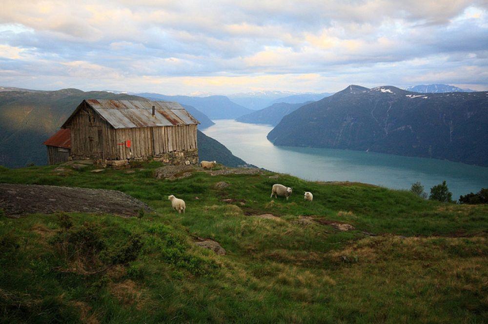 Самый большой фьорд в Европе — Согне-фьорд в Норвегии.