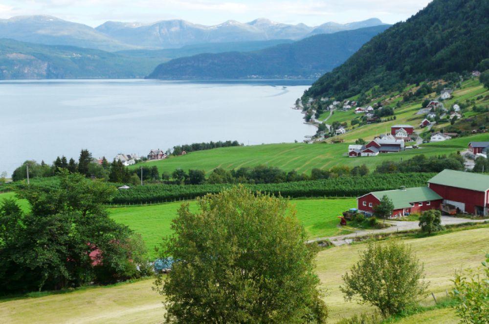 Нур-фьорд — шестой по длине фьорд Норвегии, также популярный среди туристов из-за того, что обеспечивает лёгкий доступ к нескольким языкам ледника Йостедалсбреен, самого большого ледника континентальной Европы.