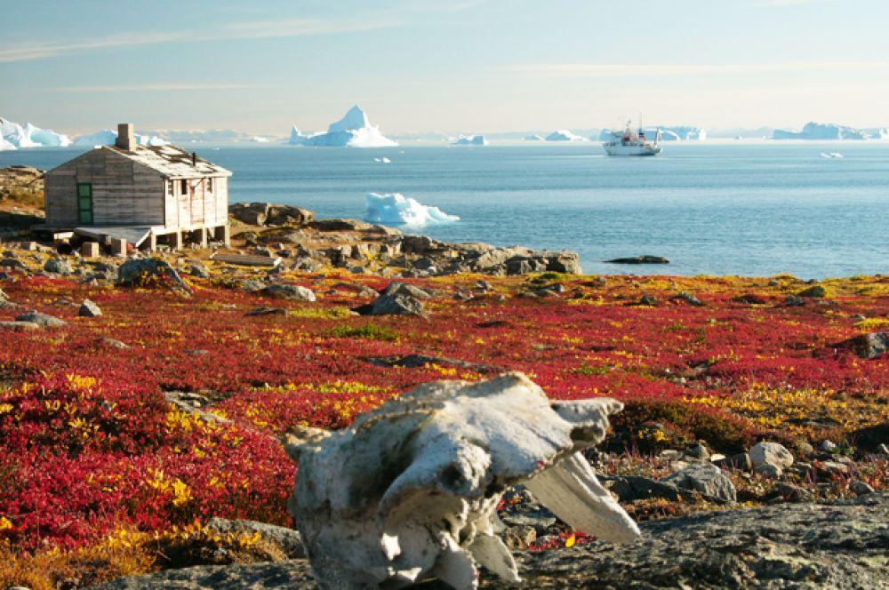 Скорсби или Кангертиттивак — самый большой фьорд в мире, расположенный в восточной части Гренландии. Его длина составляет 350 км, а глубина достигает 1450 метров. С октября по июнь Скорсби покрыт льдом.